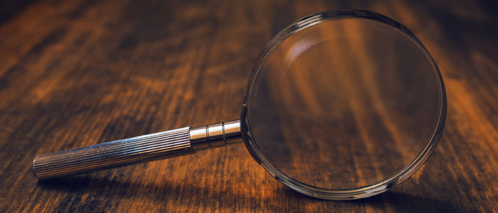 Magnifying-glass-(700x300)-MD